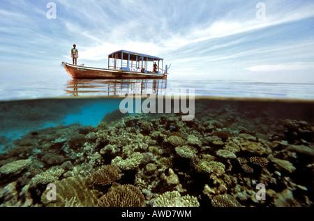 Dhoni, underwater, corals, Maldives, Indian Ocean - Stock Photo