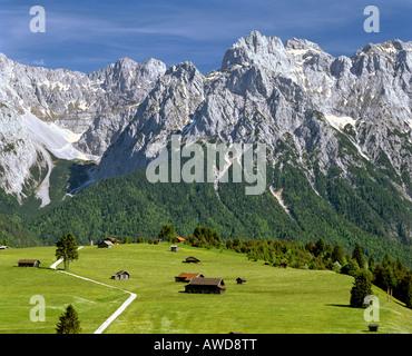 Tonihof Wildlife Park, Karwendel Range, Mittenwald Forest, Upper Bavaria, Bavaria, Germany, Europe - Stock Photo