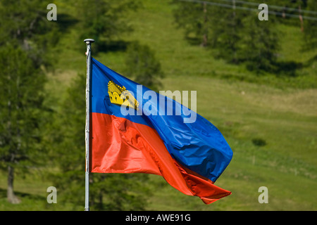 Liechtenstein flag, Liechtenstein, Europe - Stock Photo