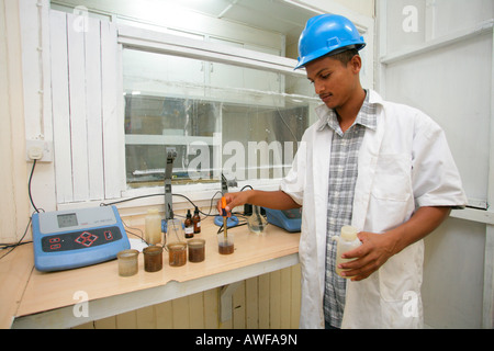 Quality control of sugar cane at the Demerara Sugar laboratory, Demerara Province, Guyana, South America - Stock Photo