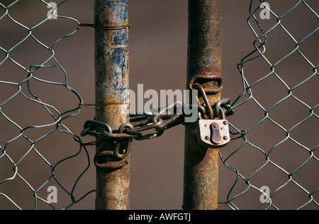 Chain link gate with chain and padlock, North Rhine-Westphalia, Germany, Europe - Stock Photo