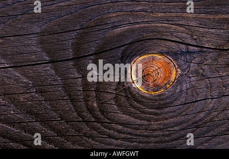 Old wooden board with knothole - Stock Photo