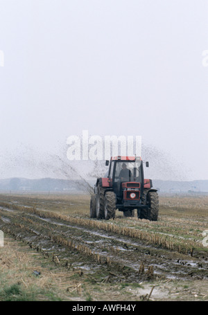 Farmer spreading manure on a field, Netherlands, Europe - Stock Photo