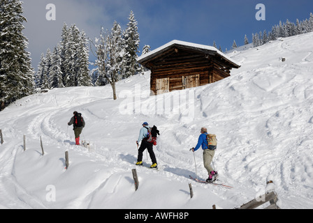 Mountaineers ascending alpine peak by ski Wildschoenau Tirol Oesterreich - Stock Photo