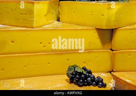 Cheese on the fair 'Gruene Woche' in Berlin - Stock Photo