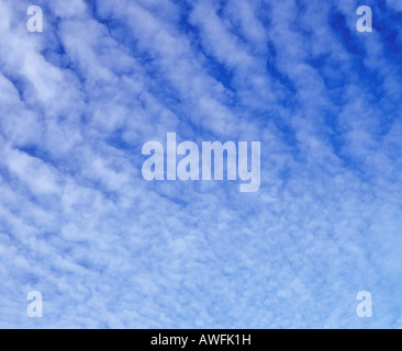 Altocumulus clouds in a blue sky - Stock Photo