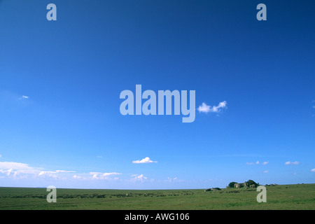 Open skies over Serengeti Plains with line of wildebeest moving towards a rock kjope - Stock Photo