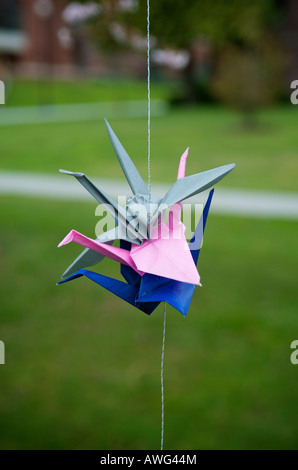 Blue pink and grey origami swans hanging from a string in front of a blurred backgound of green grass on the University - Stock Photo