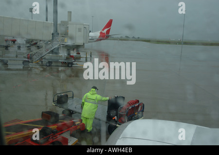 baggage handlers loading bags Brisbane airport Queensland Australia dsc 7363 - Stock Photo