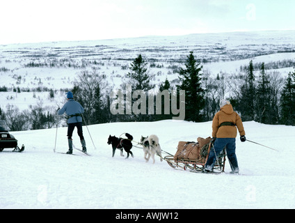 Sweden, sled-dogs pulling sled and people on cross country skis in snow - Stock Photo