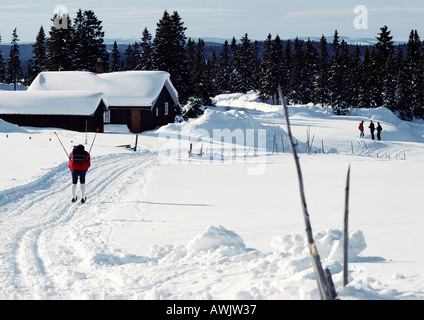 Sweden, cross country skier approaching snow-covered cabins - Stock Photo