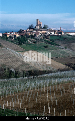 Vineyard on hill with village in background, Serralunga d'Alba, Province Cuneo, Piedmont, Italy - Stock Photo