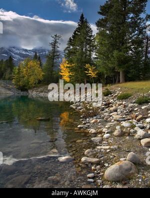 Green pines and yellow bushes on stony coast of cold lake - Stock Photo