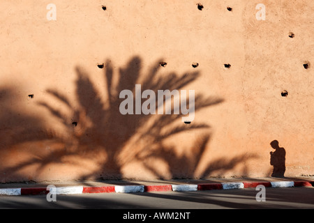 Huge palm tree and a young man casting shadows on a old loam wall, late afternoon, historic Medina quarter, Marrakesh, - Stock Photo
