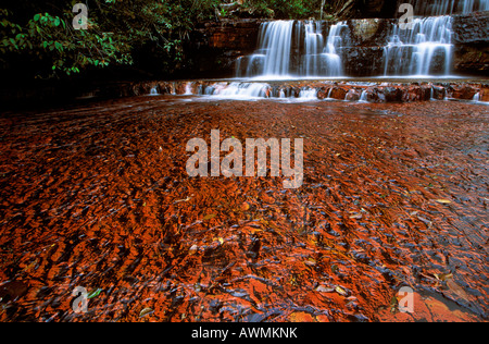 Jasper riverbed, Quebrada de Jaspe, Bolívar, Gran Sabana, Venezuela, South America - Stock Photo