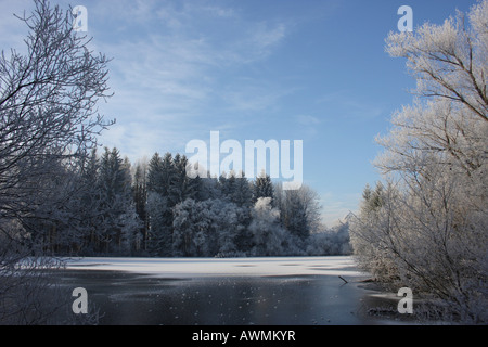 Frozen lake, surrounded by frost-covered trees in morning light - Stock Photo