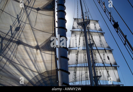 Three-mast sailing ship Amorina, Red Sea - Stock Photo
