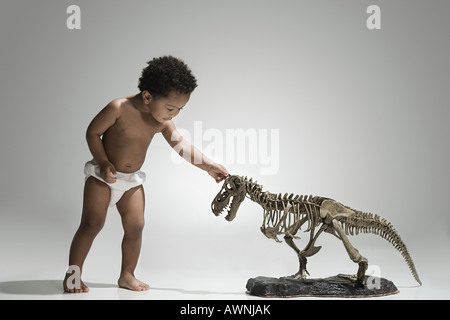 Toddler playing with a dinosaur skeleton - Stock Photo