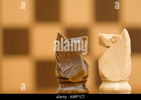 Two horses in front of chess board - Stock Photo