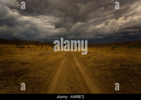 Dark storm clouds gather over Chobe National Park game reserve during the rainy season in Botswana - Stock Photo