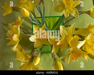 bouquet of spring flowers daffodils jonquils in a vase - Stock Photo