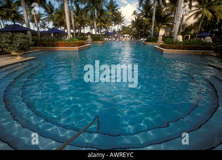 Freshwater swimming pool swimming pool ritz carlton san juan hotel stock photo 9509423 alamy for What is a freshwater swimming pool