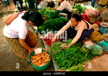 Laos Vientiane Talat Sao Morning Market vegetable stall - Stock Photo
