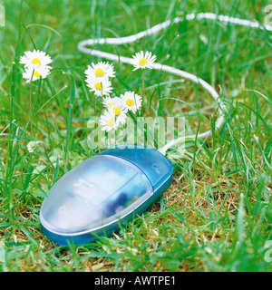 Computer mouse on grass next to flowers - Stock Photo
