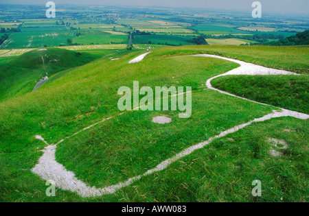 Head and eye spot of the White Horse chalk hill figure Uffington Oxfordshire England - Stock Photo