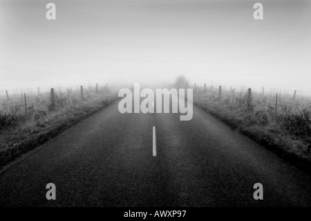 Countryside road leading into thick fog with no end in sight Mono - Stock Photo