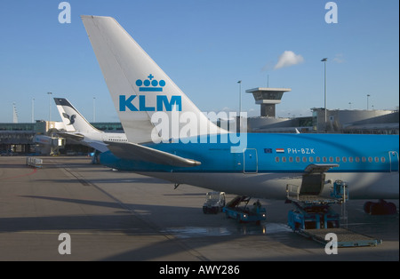 dh Schiphol Terminal AMSTERDAM AIRPORT HOLLAND Aircraft KLM aeroplanes loading plane cargo airplane - Stock Photo