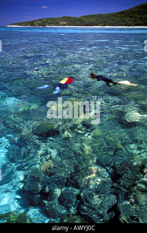 Divers on the surface of coral reef lagoon, Lizard Island, Great Barrier Reef Marine Park, Queensland, Australia - Stock Photo