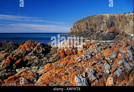 King George Beach on Kangaroo Island, South Australia - Stock Photo
