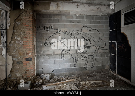 Graffiti in a brownfield site located in Vichy (France). Graffiti dans une usine désaffectée (Vichy 03200 - Allier 03 - France).