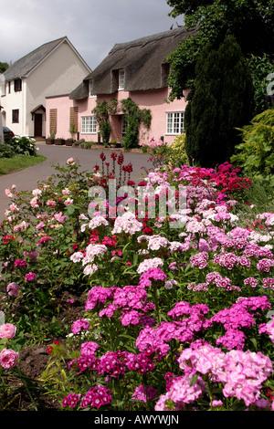 UK Somerset Dunster cottage gardens in Park Street - Stock Photo