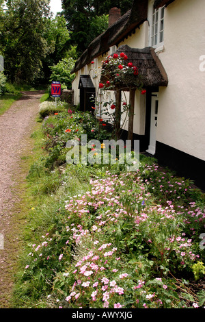 UK Somerset Dunster cottage gardens in Park Street - Stock Photo