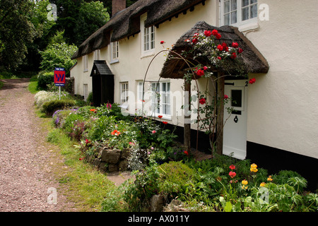 Somerset Dunster cottage gardens in Park Street - Stock Photo