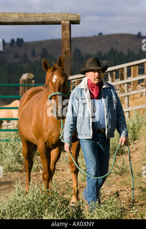 Cowboy with horse, wildwest, Oregon, USA - Stock Photo