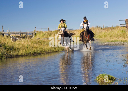 Cowgirl and cowboy riding in water, Oregon, USA - Stock Photo
