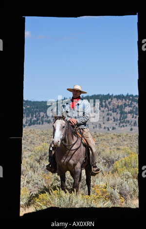 Cowboy with horse at barn window, wildwest, Oregon, USA - Stock Photo