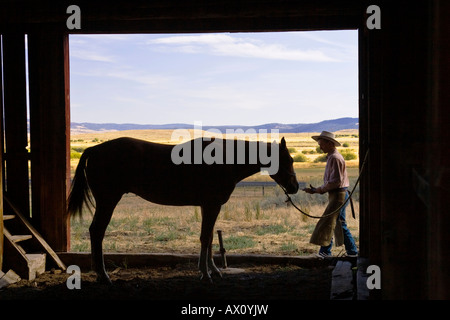 Cowboy with horse in old barn, wildwest, Oregon, USA - Stock Photo