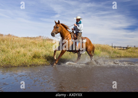 Cowboy riding in water, wildwest, Oregon, USA - Stock Photo