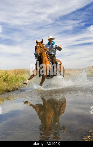 Cowboy riding in water, Oregon, USA - Stock Photo