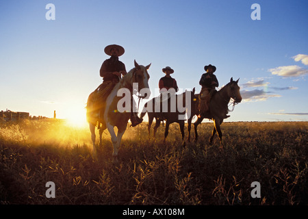 Cowboys horseriding at sunset, Oregon, USA - Stock Photo