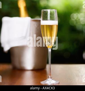 Champagne in Champagne Flute - Stock Photo