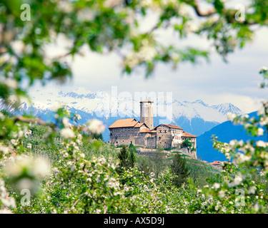 Castel Valer near Tassullo, Val di Non, Trentino-Alto Adige, Italy, Europe - Stock Photo
