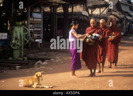 Buddhist monks receiving rice from a village woman in rural Burma - Stock Photo