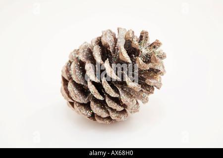 Fir cone, close-up - Stock Photo