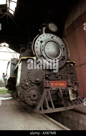 India Tamil Nadu Ootacamund train transport narrow gauge locomotive in shed - Stock Photo