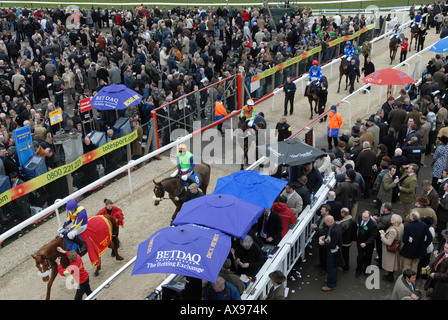 Bookies doing business on Gold Cup day at Prestbury Racecourse during the Cheltenham National Hunt Festival - Stock Photo